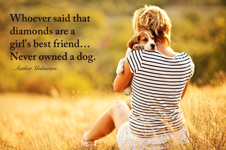 dog-quotes-pinterest-2