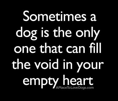 quote-void