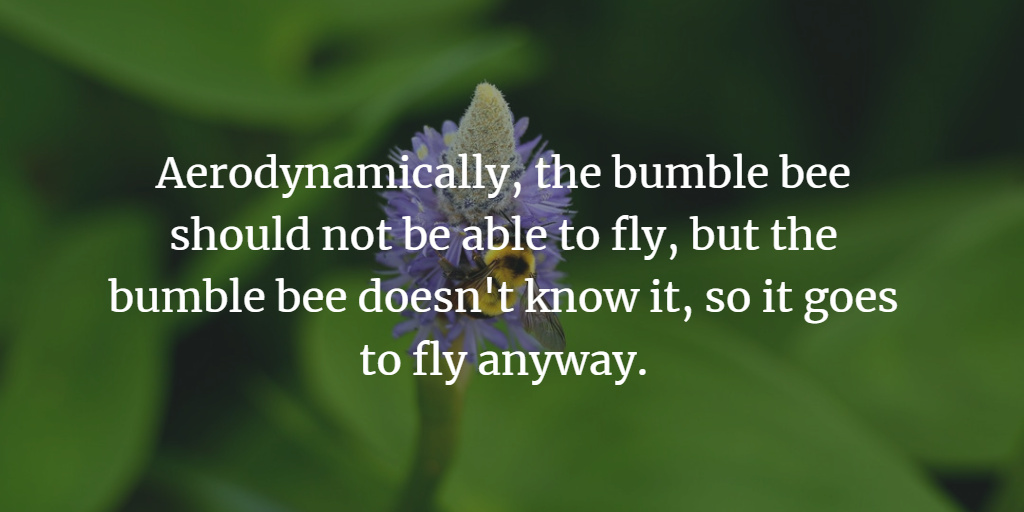 bumble bee quotes
